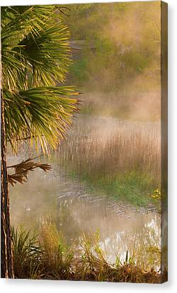 Canvas Print featuring the photograph Morning Mist by Margaret Palmer