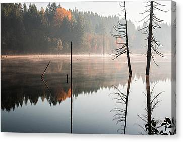 Morning Mist On A Quiet Lake Canvas Print