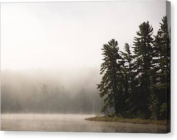 Morning Mist On Mew Lake Canvas Print by Cale Best