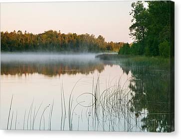 Morning Mist Over Mink River Estuary Canvas Print