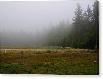 Canvas Print featuring the photograph Morning Mist Solitude by Tikvah's Hope