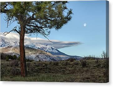 Morning Moon Canvas Print