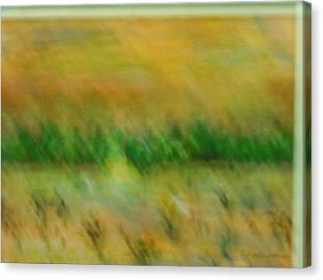 Morning On The Lake With Whooping Cranes Canvas Print by BJ Abrams