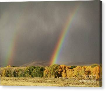 Morning Rainbow In Wyoming Canvas Print by Dawn Senior-Trask
