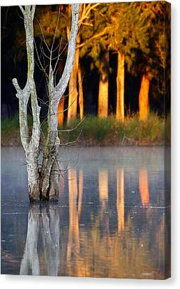 Morning Reflections Canvas Print by Nicholas Blackwell
