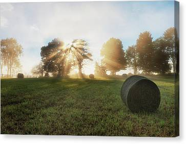 Light Rays Canvas Print - Morning Rolls by Bill Wakeley