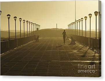 Morning Run Canvas Print by Brian Kamprath