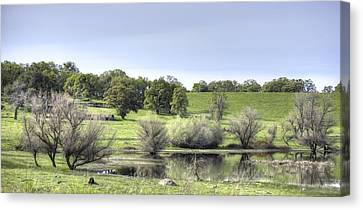 Morning Serenity Canvas Print