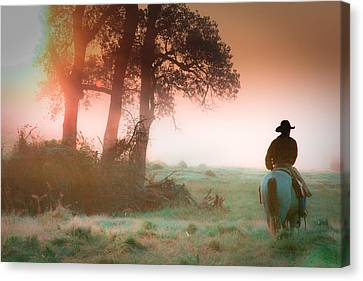 Morning Solitude Canvas Print by Toni Hopper
