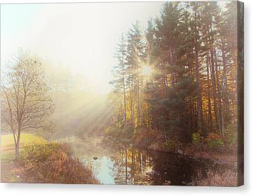 Reflections Of Sun In Water Canvas Print - Morning Speaks by Karol Livote