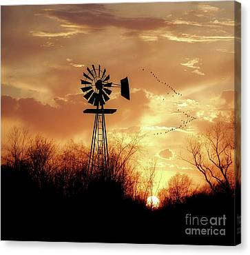 Morning Sunrise Canvas Print by Anthony Djordjevic