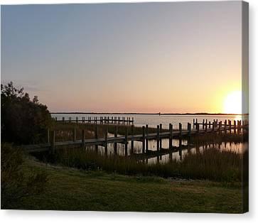 Morning Sunrise Over Assateaque Island Canvas Print by Donald C Morgan