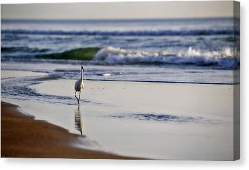 Morning Walk At Ormond Beach Canvas Print by Steven Sparks