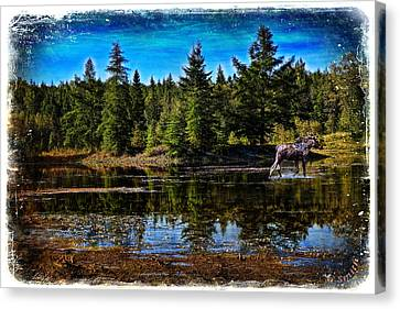 Canvas Print featuring the photograph Morning Walk by Gary Smith