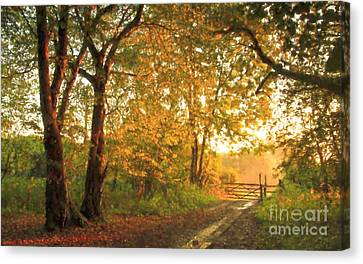 Morning Warm Light Canvas Print by Veikko Suikkanen