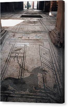 Mosaic In Pompeii Canvas Print by Marna Edwards Flavell