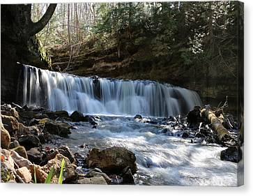 Mosquito Falls Canvas Print by Bill Fumelle
