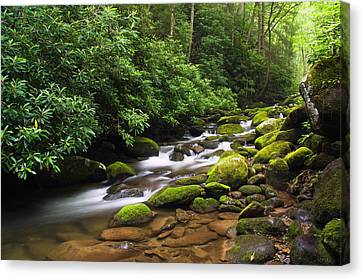Moss-covered Boulders Along Roaring Canvas Print by Panoramic Images