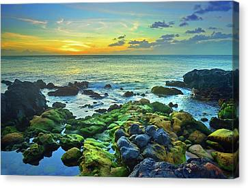 Canvas Print featuring the photograph Moss Covered Rocks At Sunset In Molokai by Tara Turner