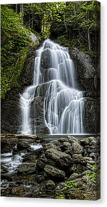 Pyrite Canvas Print - Moss Glen Falls - Vertical by Stephen Stookey