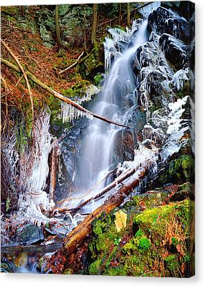 Mossy Cascade Falls Canvas Print