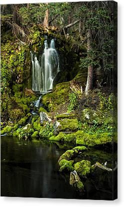 Mossy Falls Canvas Print