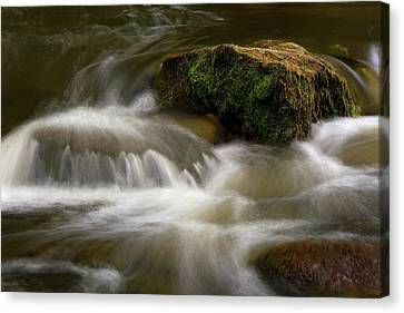 Mossy Foam Canvas Print by Timothy McIntyre