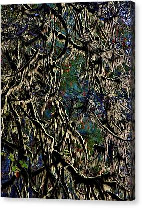 Mossy Forest Canvas Print by Stacie Gary