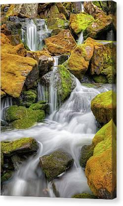 Falling Water Canvas Print - Mossy Rock Falls by Bill Wakeley