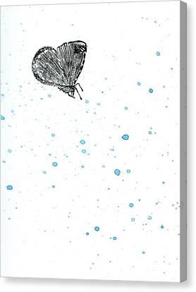 Moth Canvas Print by Bella Larsson