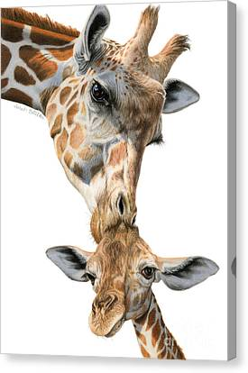 Mother And Baby Giraffe Canvas Print by Sarah Batalka