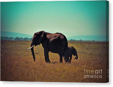 Canvas Print featuring the photograph Mother And Child by Karen Lewis