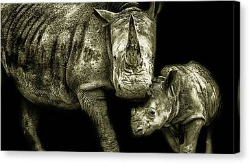 Mother And Child Canvas Print by Martin Newman