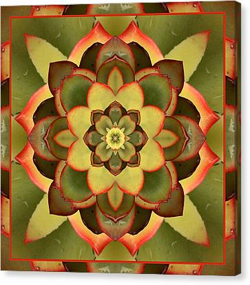 Mother Lotus Canvas Print