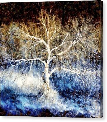 Mother Natures Dance Canvas Print