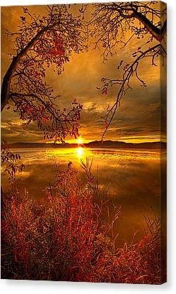 Mother Nature's Son Canvas Print by Phil Koch