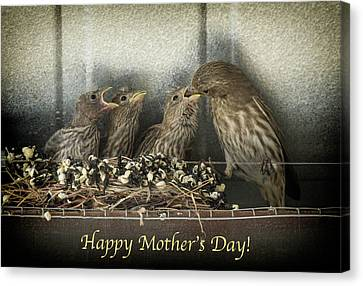 Mother's Day Greetings Canvas Print by Alan Toepfer