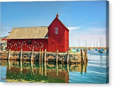 Motif One Canvas Print by Marcia Colelli