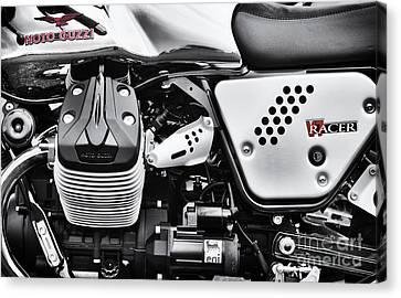Moto Guzzi V7 Racer Monochrome Canvas Print by Tim Gainey