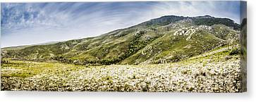 Mount Agnew Landscape In Tasmania Canvas Print by Jorgo Photography - Wall Art Gallery