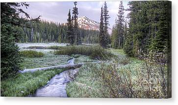 Mount Bachelor From Soda Creek At Dawn Canvas Print by Twenty Two North Photography