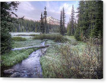Mount Bachelor From Soda Creek At Sunrise Canvas Print by Twenty Two North Photography