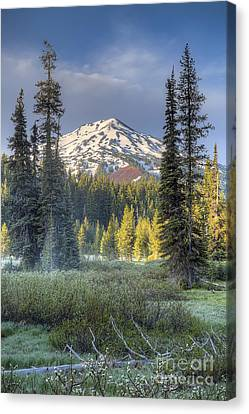 Sunriver Canvas Print - Mount Bachelor From Todd Lake by Twenty Two North Photography