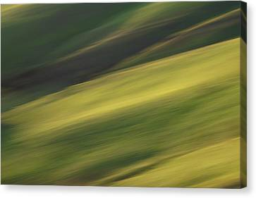Mount Diablo - Impressions Canvas Print by Francesco Emanuele Carucci