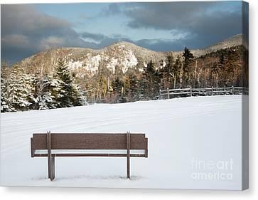 Mount Huntington - White Mountains New Hampshire  Canvas Print by Erin Paul Donovan