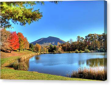Mount Jefferson Reflection Canvas Print by Dale R Carlson