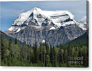 Canvas Print featuring the photograph Mount Robson British Columbia by Elaine Manley