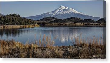 Mount Shasta And Trout Lake Canvas Print by Loree Johnson
