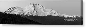 Mount Shasta  Canvas Print