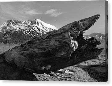 Mount St Helen Canvas Print